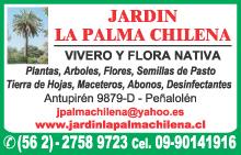 Viveros santiago amarillas buscador emol chile for Viveros en maipu
