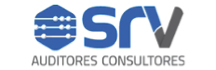 Srv Auditores Consultores  - Auditores Consultores