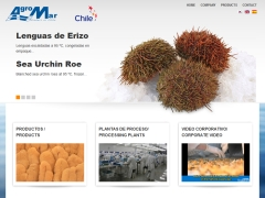 agromarchile_cl
