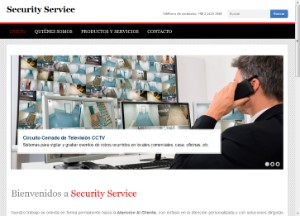 alarmassecurityservice_cl