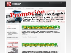 autoescuelaconcepcion_cl