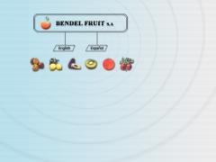 bendel_cl