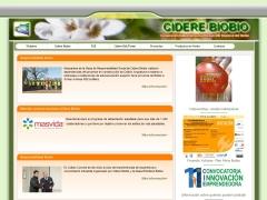 ciderebiobio_cl