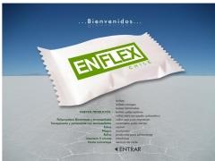 enflexchile_cl