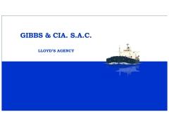 gibbs_cl