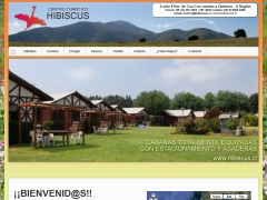 hibiscus_cl
