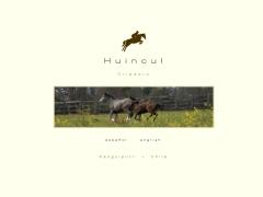 huincul_cl