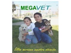 megavet_cl