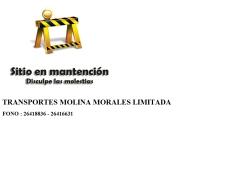 molinamorales_cl