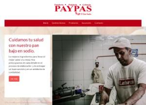 paypaschile_com