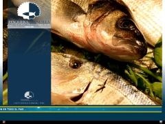 pesqueramancilla_cl