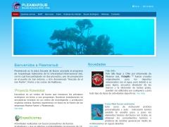 pleamarsub_cl