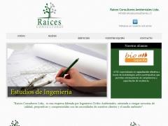 raicesconsultores_cl