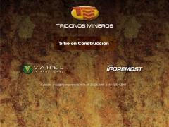 triconosmineros_cl