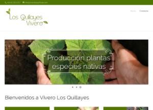 viverolosquillayes_com
